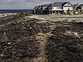 FEMA - 39771 - burned area surrounding a subdivision in Colorado.jpg