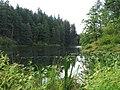 Fallen Leaf Lake (2019-09-10).jpg