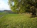 Farmland and track at North Wood Farm Boynton - geograph.org.uk - 1038755.jpg