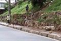 Favela (351068899).jpg