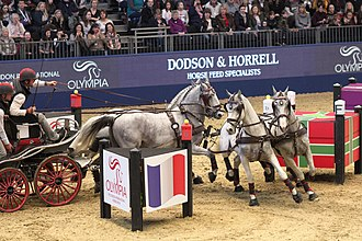 Olympia London International Horse Show - Image: Fei Driving World Cup at the Olympia Horse Show 2017