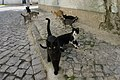 Feral cats in Praia do Pedrógão, Portugal, November, 2018-1.jpg