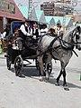 Feria de Mayo, Torrevieja 2010 (4594116341).jpg