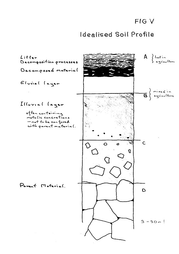 Fig V Idealised Soil Profile.jpg