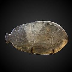 Fish-shaped kohol palette-E 28061
