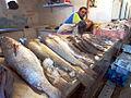 Fish Monger, Dakhla.jpg