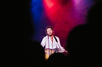 Josh Tillman - Father John Misty performing in Milwaukee, Wisconsin in 2013.