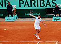 Flickr - Carine06 - Wawrinka backhand.jpg
