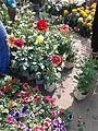 Flowers Market in Jessore.jpg