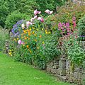 Flowers by the Towpath, Gargrave (27269025103).jpg