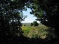 Footpath South - geograph.org.uk - 203388.jpg