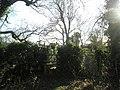 Footpath just before railway line - geograph.org.uk - 661102.jpg