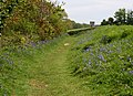 Footpath to Empacombe - geograph.org.uk - 794446.jpg
