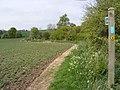 Footpath to Framlingham Hall ^ Peppers Wash - geograph.org.uk - 2379857.jpg
