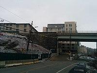 Pont de l'avenue Forbes (31497552461) .jpg