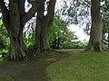 Fort Hill Park, Enniskillen - geograph.org.uk - 1361449.jpg