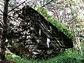 Fort VI Czeczotki - pozostałosci - panoramio.jpg