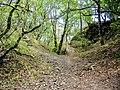 Fossé sud du Freundstein.jpg