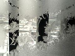 Frost (5282372417).jpg