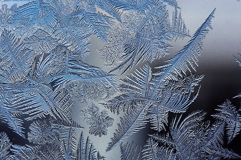File:Frost patterns 2.jpg