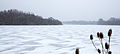 Frozen Lake (6817996621).jpg