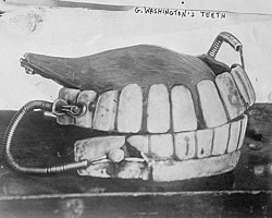 GWashingtons teeth (cropped).jpg