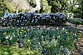Garden path tulip bed at Myddelton House, Enfield, London, England.jpg