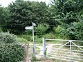 Gate and stile into the Northern Enclosure, Warwick Common - geograph.org.uk - 1400825.jpg