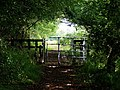 Gate on footpath by the River Severn - geograph.org.uk - 883800.jpg