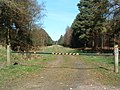 Gated Forest Track - geograph.org.uk - 367490.jpg