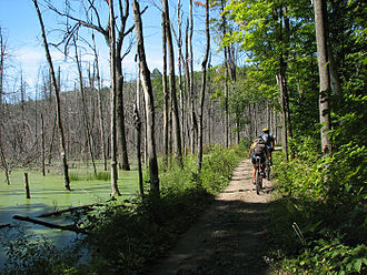 Gatineau Park - Biking along one of the many trails in Gatineau Park