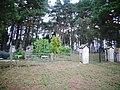 Gelnai, kapinės.JPG