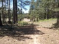 General Crook Trail, Payson, AZ 85541, USA - panoramio (5).jpg