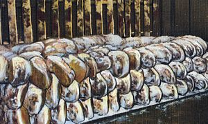 Smithfield ham - Image: Genuine Smithfield, Virginia, hams in dry salt process (crop)