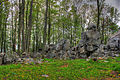 Gfp-wisconsin-rib-mountain-state-park-large-rocks-and-trees.jpg