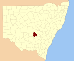 Gipps NSW
