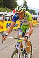 Giro d'Italia 2012, 116 pampeago basso (17784057032).jpg