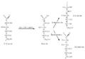 Glucose milieu alcalin dilue.png