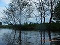 Gmina Turośl, Poland - panoramio (2).jpg