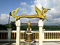 Golden Dragon Bandarban.JPG