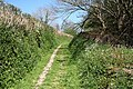 Goodleigh, footpath to the village - geograph.org.uk - 405186.jpg