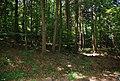 Gräberfeld Leibenfeld Deutschlandsberg.jpg