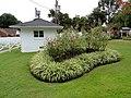 Graceland 00303.jpg