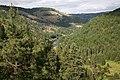 Grande Ronde River, Umatilla National Forest (34405283041).jpg