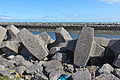 Gravelines, estuary of the river Aa into the North Sea, breakwaters-7842.jpg