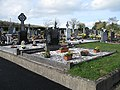 Graveyard at Ballykeefe - geograph.org.uk - 1219715.jpg