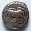 Greece, Lycia, 5th century BC - Stater- Boar (obverse) - 1916.996.a - Cleveland Museum of Art.tif