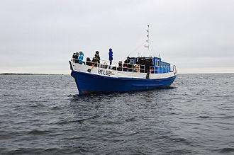 Ecotourism - Seal watching near Malusi Islands in Estonia.