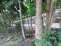 Hřbitov Záběhlice 18.jpg