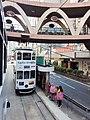 HK tram 64 view CWB 銅鑼灣 Causeway Bay 怡和街 Yee Wo Street ring shape footbridge November 2019 SS2 09.jpg